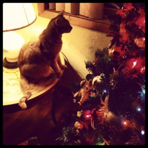Cat-Sitting-Christmas Tree