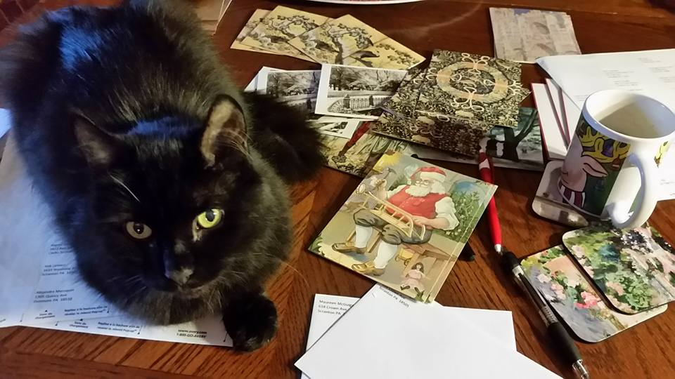 Black-Cat-on-Holiday-Cards